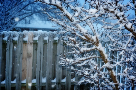 Winterklaar Maken Tuin : Herfstvakantie zelf ga ik de tuin vast winterklaar maken aldus